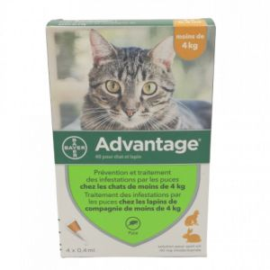 Advantage-40 Chat/lapin Pipet