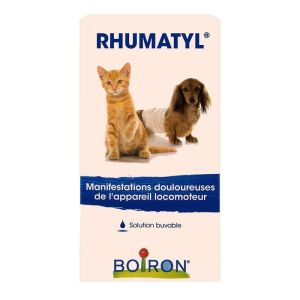 Rhumatyl Pa solution buvable 30mL