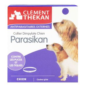 Parasikan Collier Chien
