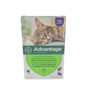 Advantage-80 Chat/lapin Pipet